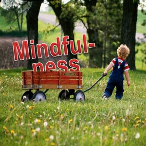 Bring Mindfulness